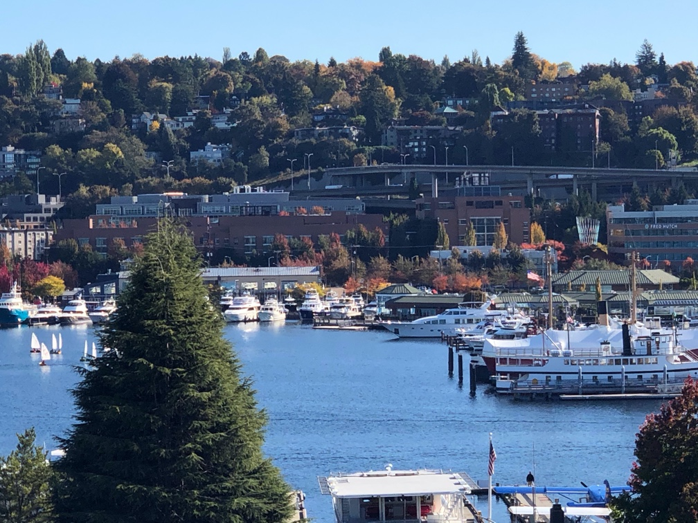 View of Lake Union and Capitol Hill, on a sunny day, photographed at the offices of The Omni Group.